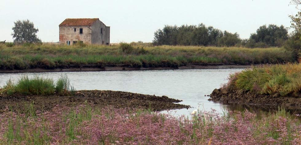 Casone e barene nelle Saline di Comacchio Parco del Delta del Po