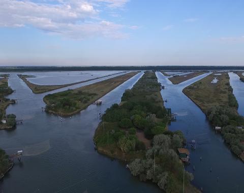 i canali della Pialassa della Baiona nel Parco del Delta del Po